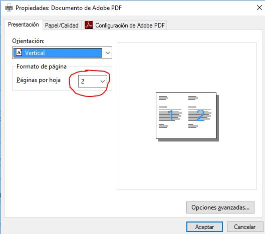 Imprimir dos hojas por página. Muestra el cuadro de diálogo Propiedades de documento pdf en su ficha Presentación con el ajuste de dos páginas por hoja.